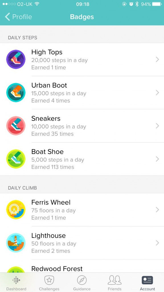 Fitbit App Activity Data